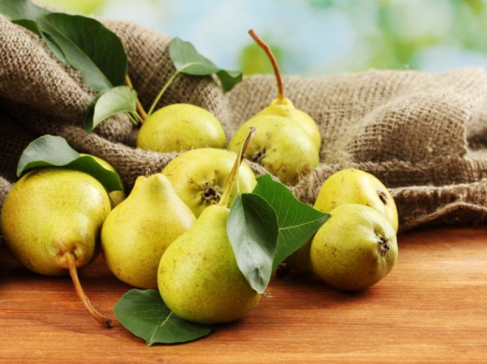 Time to Know Your Pear: Health Booster & Cough Rescue!